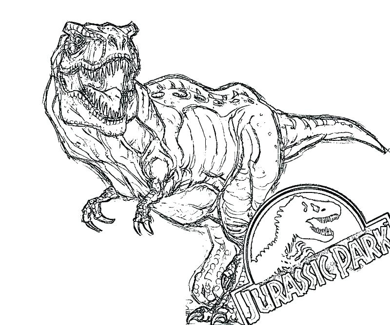 800x667 T Rex Color Page T Coloring Pages Packed With Park To Print Free