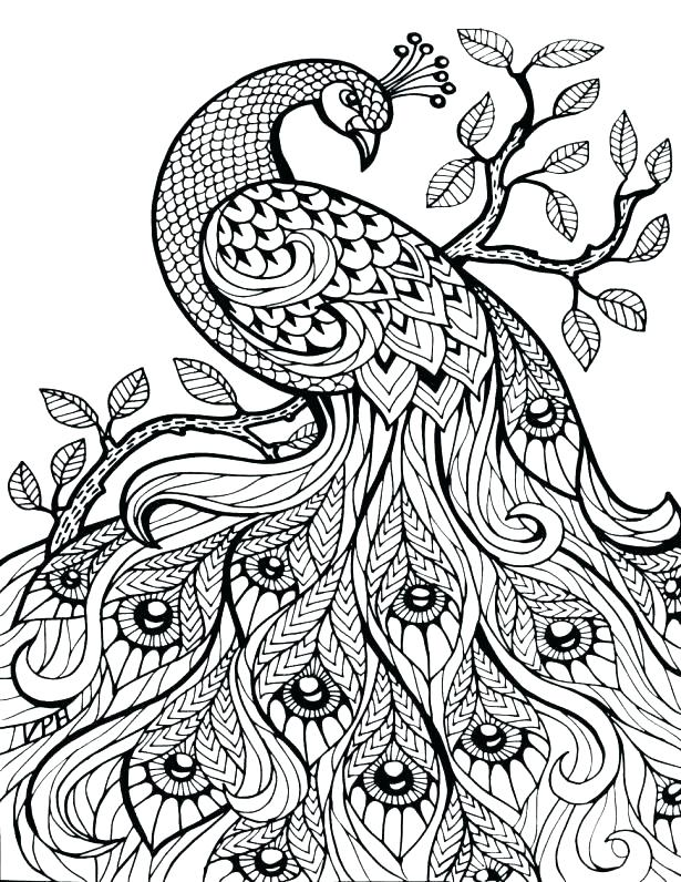 615x796 Free Printable Jungle Animals Colouring Pages Zen Anti Stress