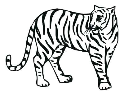 Free Zoo Animal Coloring Pages At Getdrawings Com Free For