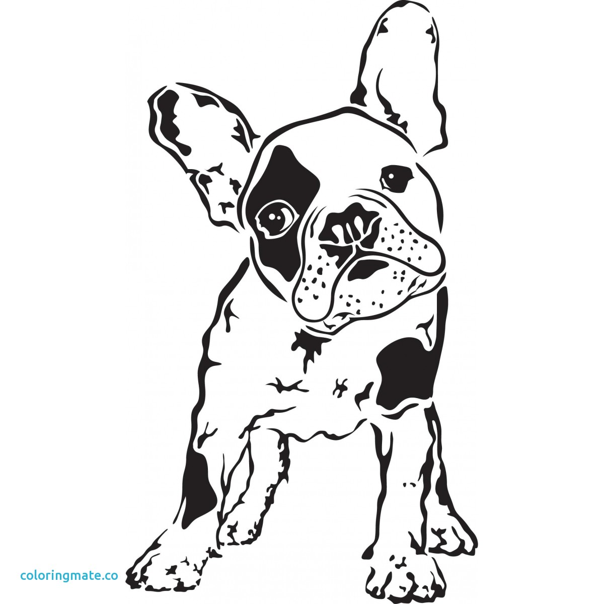1200x1200 Expert French Bulldog Coloring Pages