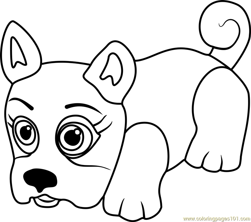 800x709 French Bulldog Coloring Page