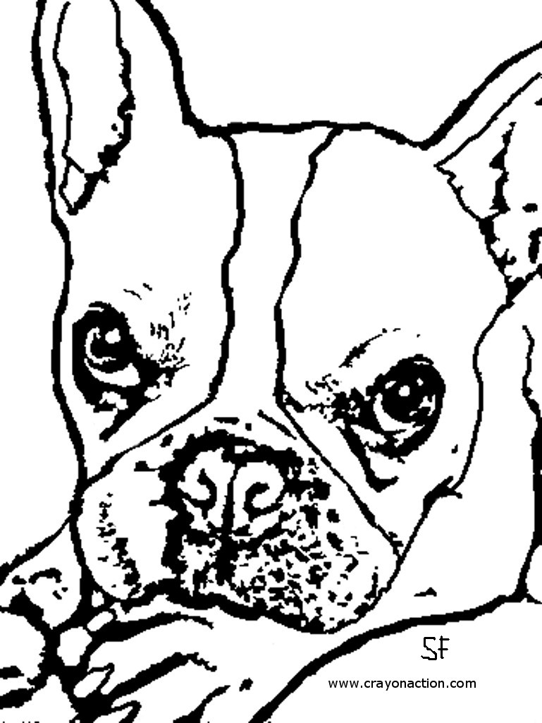 769x1025 French Bulldog Coloring Page Crayon Action Coloring Pages
