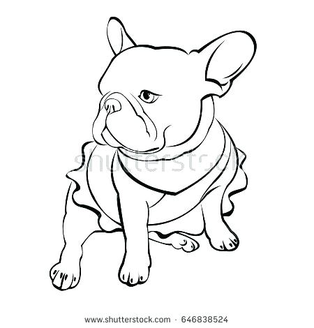 450x470 French Bulldog Coloring Pages French Bulldog Colouring Pages Cat