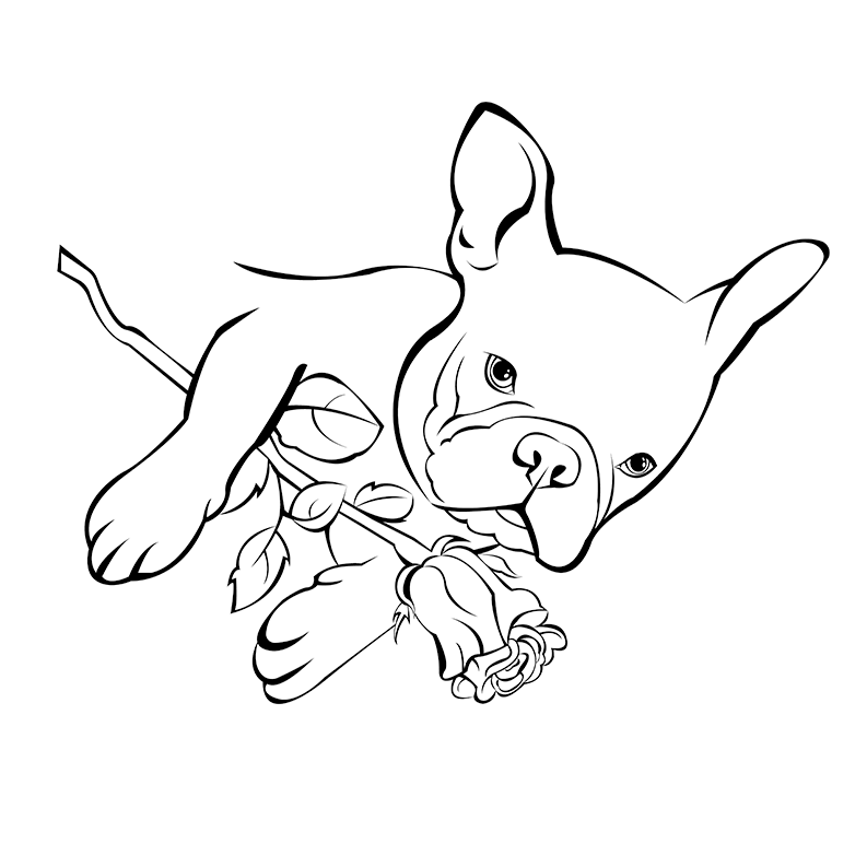 793x793 French Bulldog Rose Free Coloring Page Adults, Animals, Kids