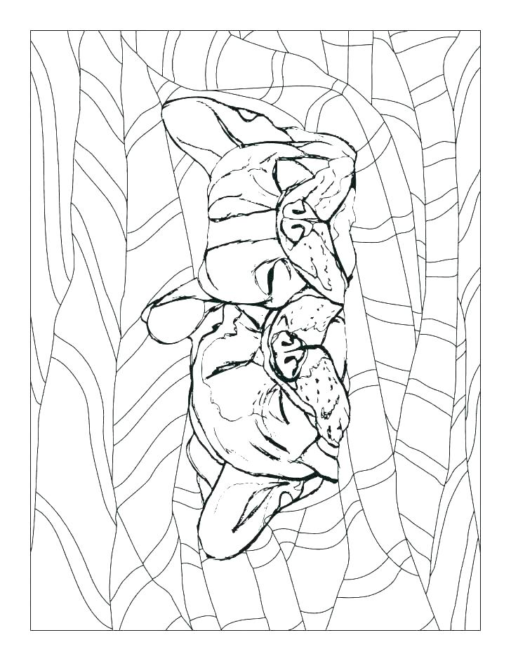 728x942 Print Out Coloring Pages Coloring Pages French And Sheets Free