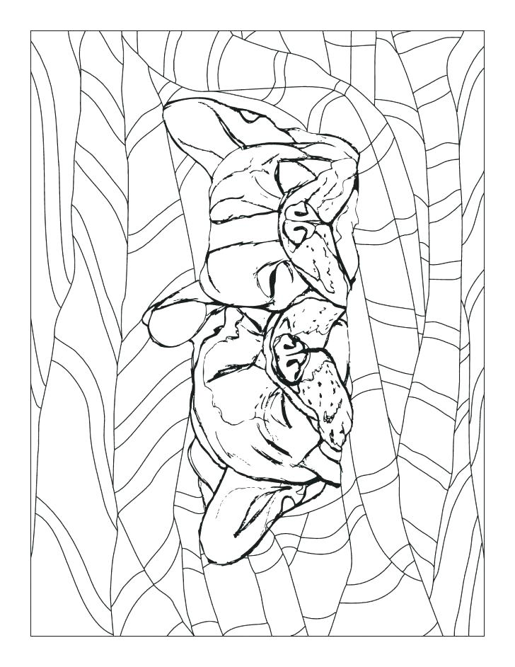728x942 French Bulldog Coloring Pages Marine Corps Coloring Pages New