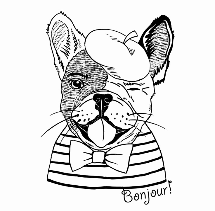 736x720 French Coloring Pages Beautiful Best Animal Zentangle Coloring