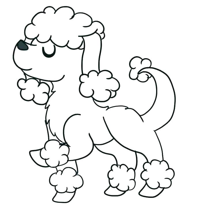 736x736 March Poodle Coloring Page Poodle Coloring Pages To Print Poodle