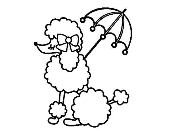 564x441 Bday Party Poodle, Stamps