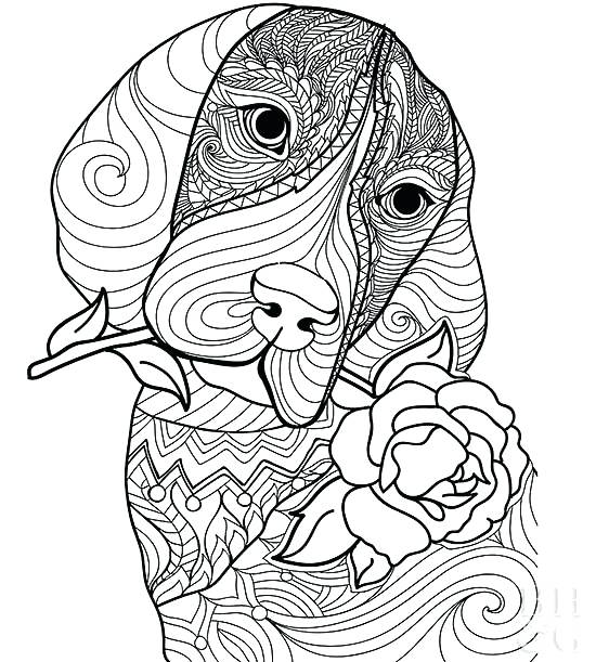 550x611 Poodle Coloring Pages Dog Poodle Skirt Coloring Page