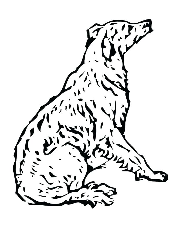 618x800 Sled Dog Coloring Pages Poodle Coloring Pages Best Coloring Pages