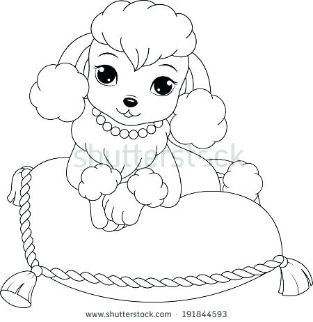 450x462 Baby Poodle Coloring Pages Poodle Coloring Page Poodle Coloring