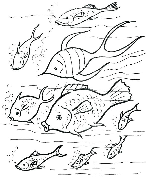 588x720 French Coloring Pages Free Printable French Coloring Pages