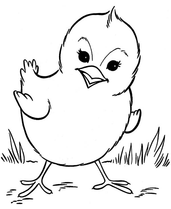Fried Chicken Coloring Page