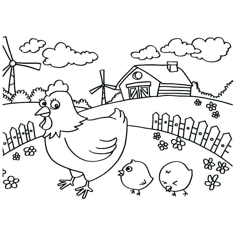 800x800 Chicken Coloring Page Chicken Coloring Page Chicken Coloring Page