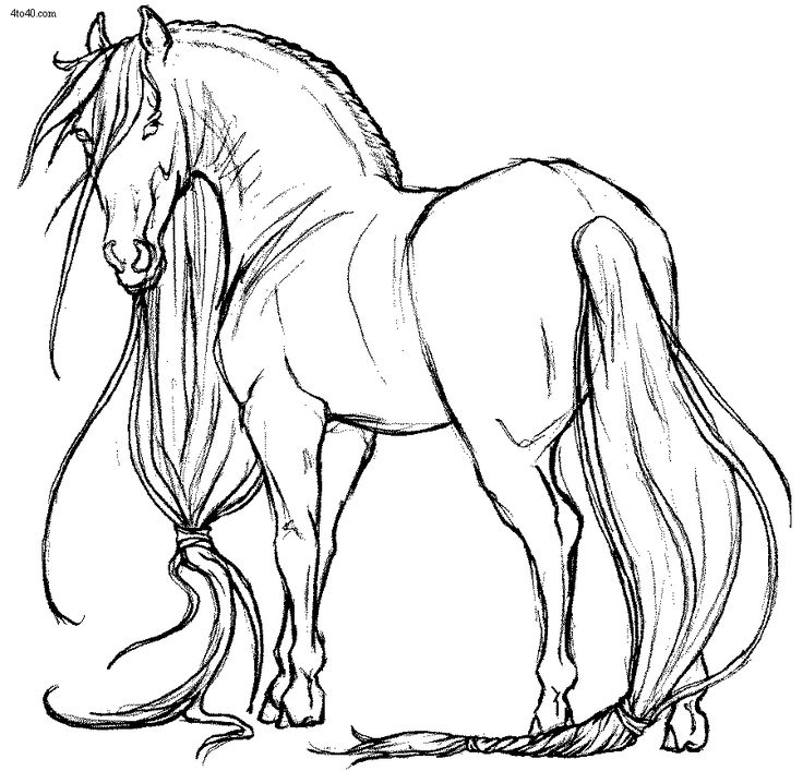 Friesian Coloring Pages