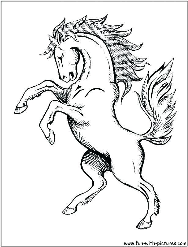 615x807 Magnificent Friesian Horse Head Coloring Pages Component