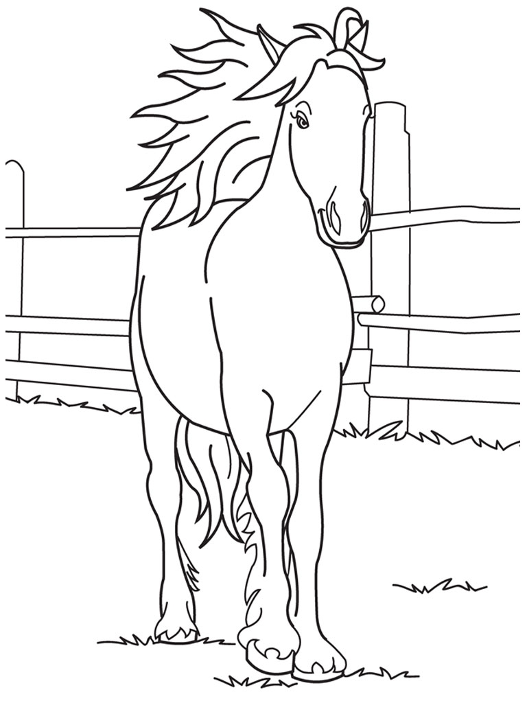 768x1024 Perfect Friesian Horse Head Coloring Pages Crest