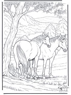 236x314 Horses Coloring Pages