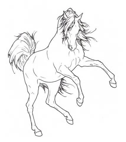 427x480 Quarter Horse Head Coloring Page, Quarter Horse Drawing Friesian