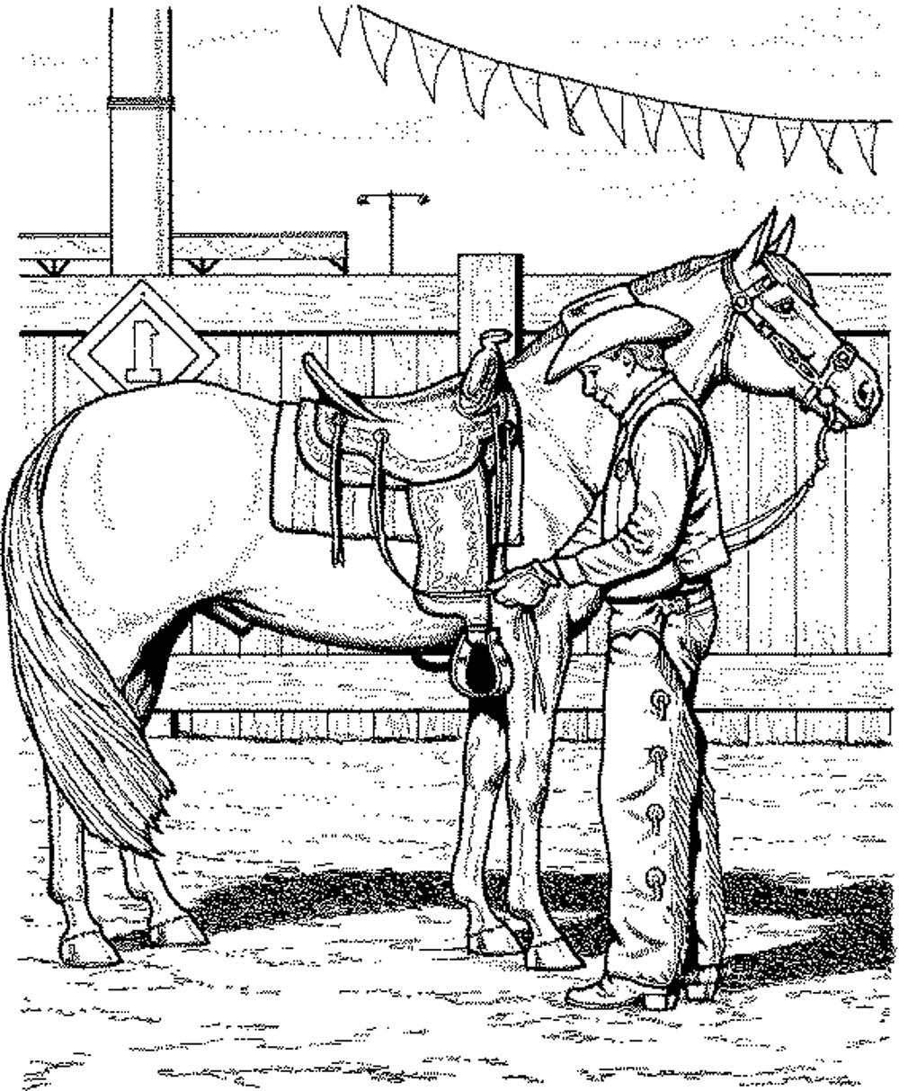 1000x1213 Realistic Horse Coloring Page
