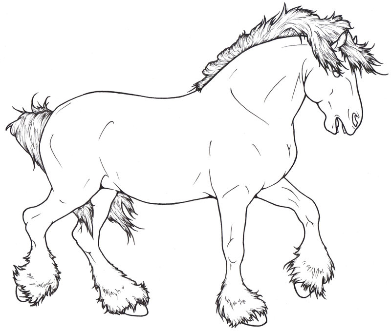800x679 Shire Lineart