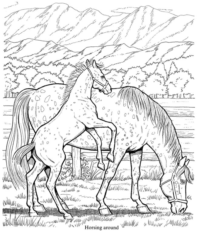 Friesian Horse Coloring Pages