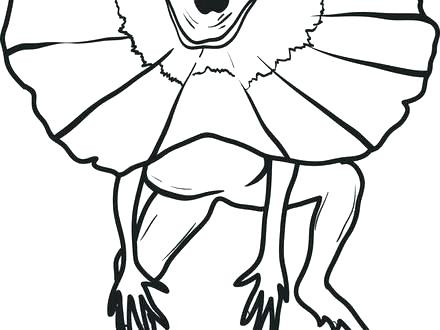 440x330 Lizard Coloring Page Simple Ard Coloring Pages Free Download Two