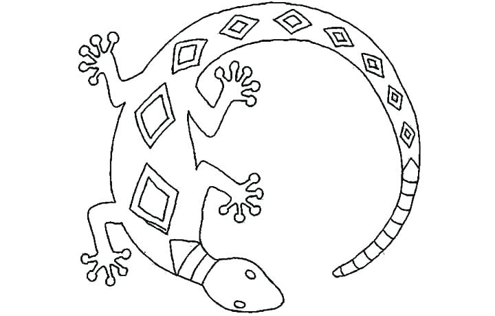 720x460 Lizard Coloring Pages Frilled Lizard Coloring Pages Amazing Spider