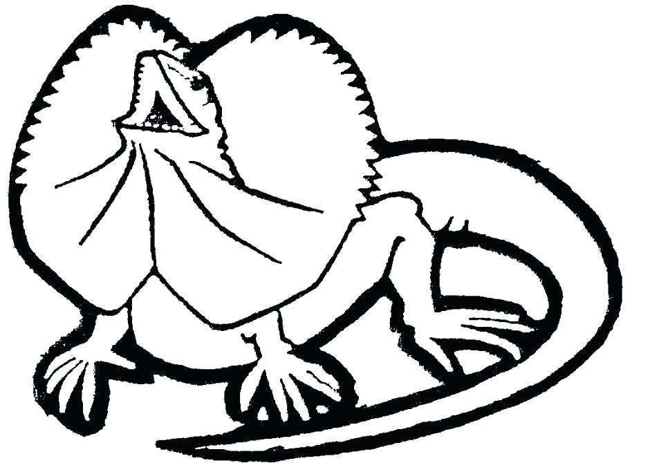 940x670 Lizard Coloring Pages Frilled Lizard Coloring Pages Coloring