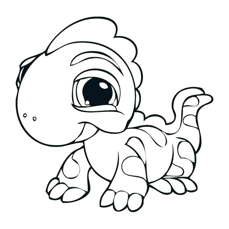 736x736 Lizard Coloring Pages Lizard Coloring Page Lizard Coloring Page