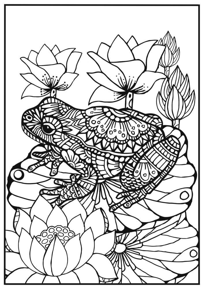 707x1000 Frog Adult Coloring Pages Lovely Best Coloring For Boo Images