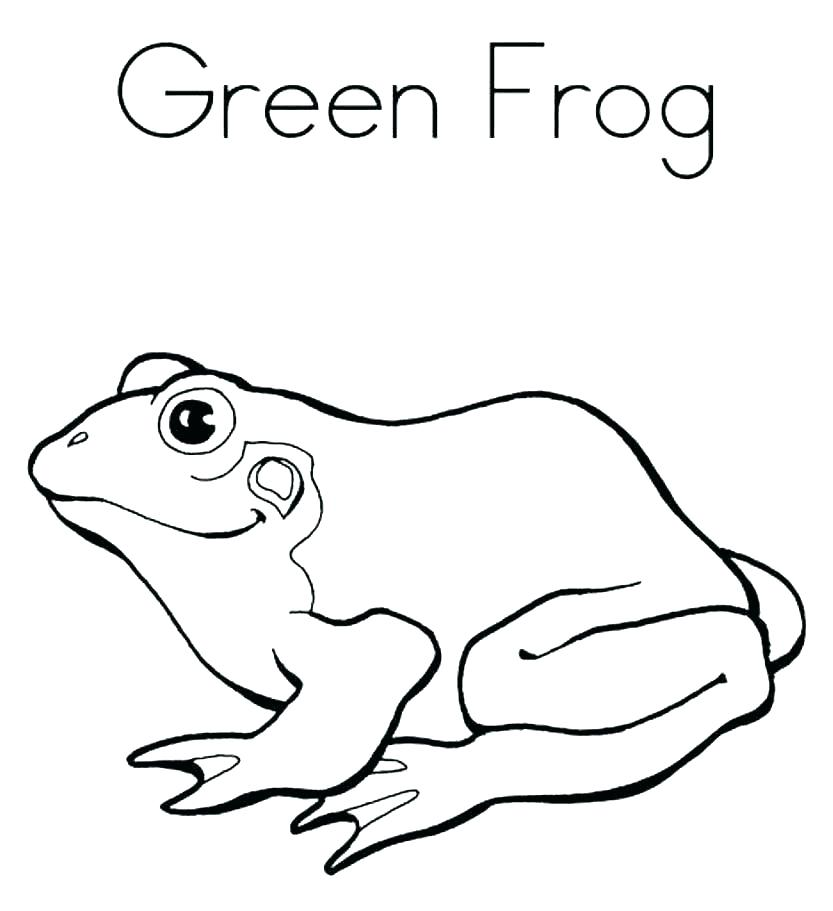 833x911 Frog Coloring Pages Frog Coloring Pictures Coloring Page Of A Frog