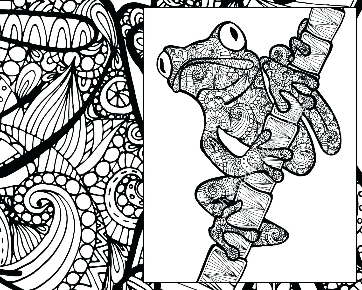 1500x1203 Frog Coloring Pages Online Sheet Animal Adult Page Zoom Free
