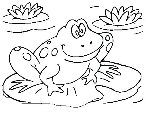 507x408 Printable Frog Coloring Pages Frog Coloring View Larger Free