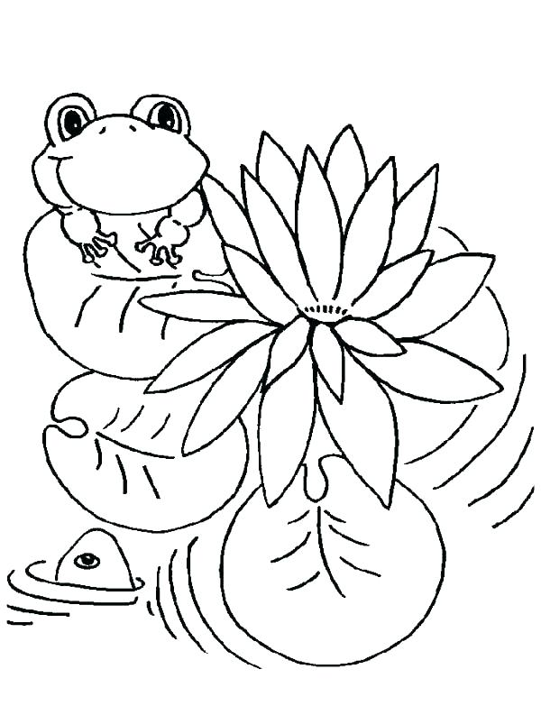 600x783 Frog Color Pages Frog Color Pages Leap Frog Color Pages Lily Pad