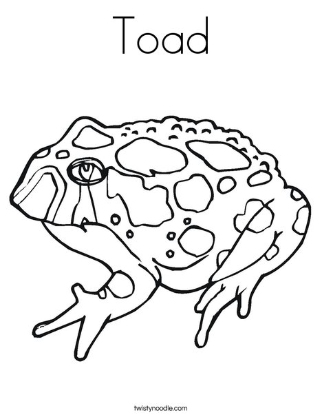 468x605 Toad Coloring Page