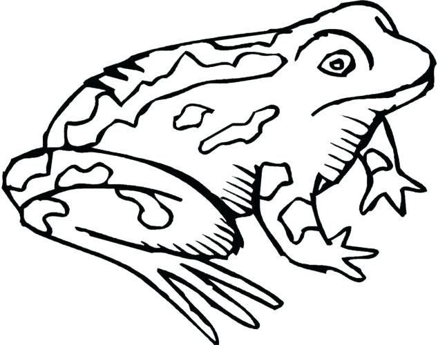 634x500 Toad Coloring Pages Coloring Page Frog And Toad Coloring Pages