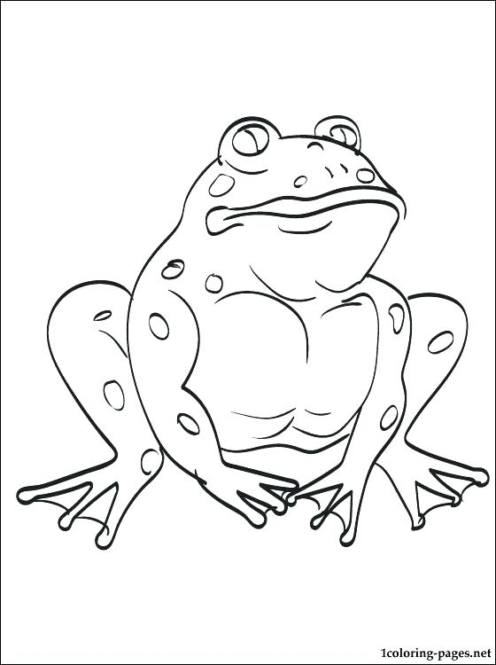 560x750 Toad Coloring Pages Picturesque Design Frog And Toad Coloring