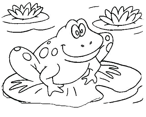 507x408 Toad Coloring Page