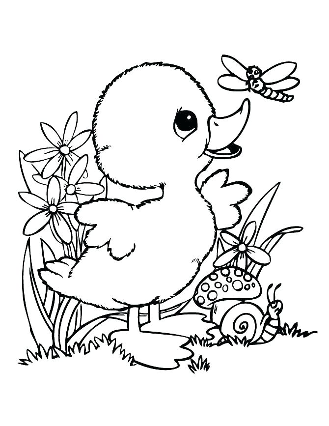 670x867 Frog Coloring Pages Frog Coloring Book E Coloring Book Pages Free