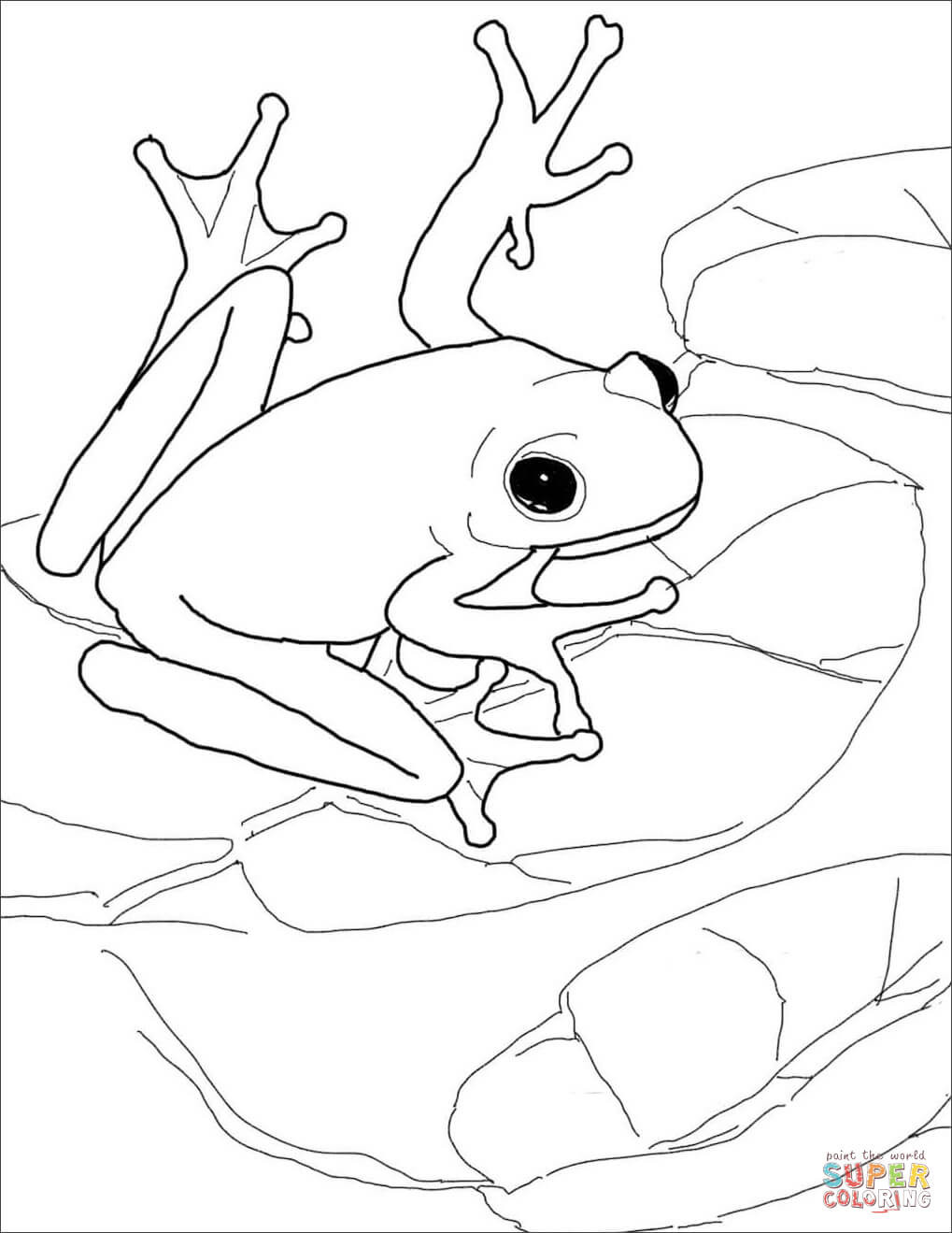 1019x1319 Frogs Coloring Pages Free Tearing Frog For Adults Acpra