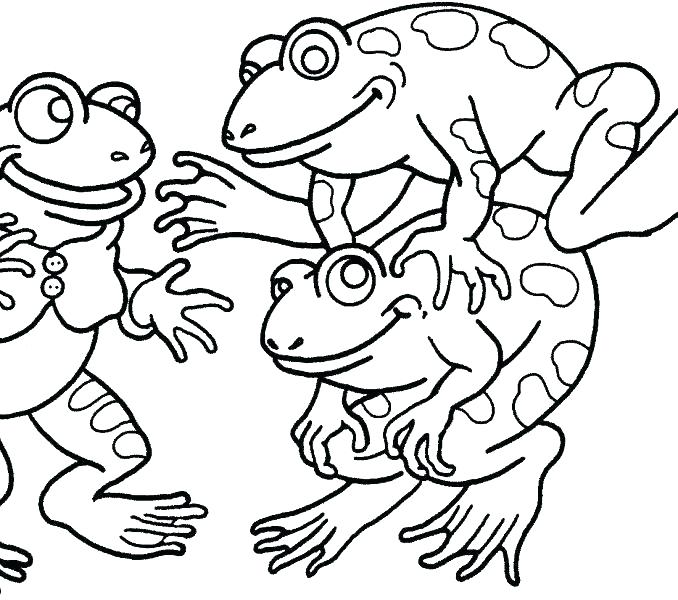 678x600 Frog Coloring Pages