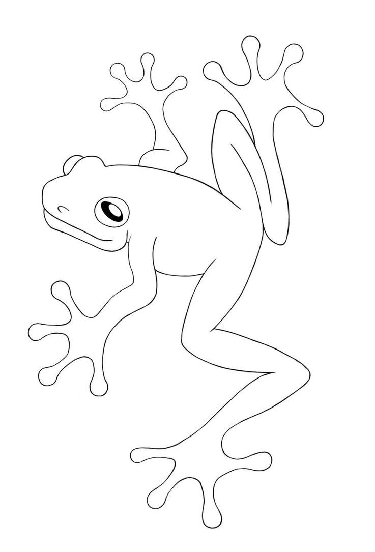737x1085 Free Printable Frog Coloring Pages For Kids Line Drawings