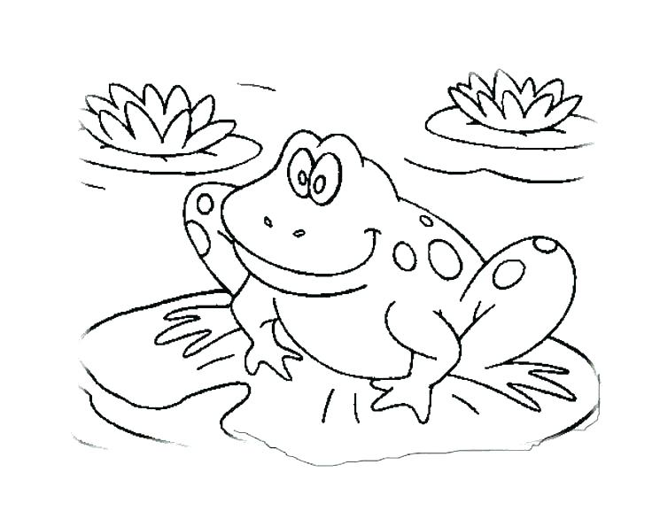Frog Coloring Pages For Kids At Getdrawings Com Free For Personal
