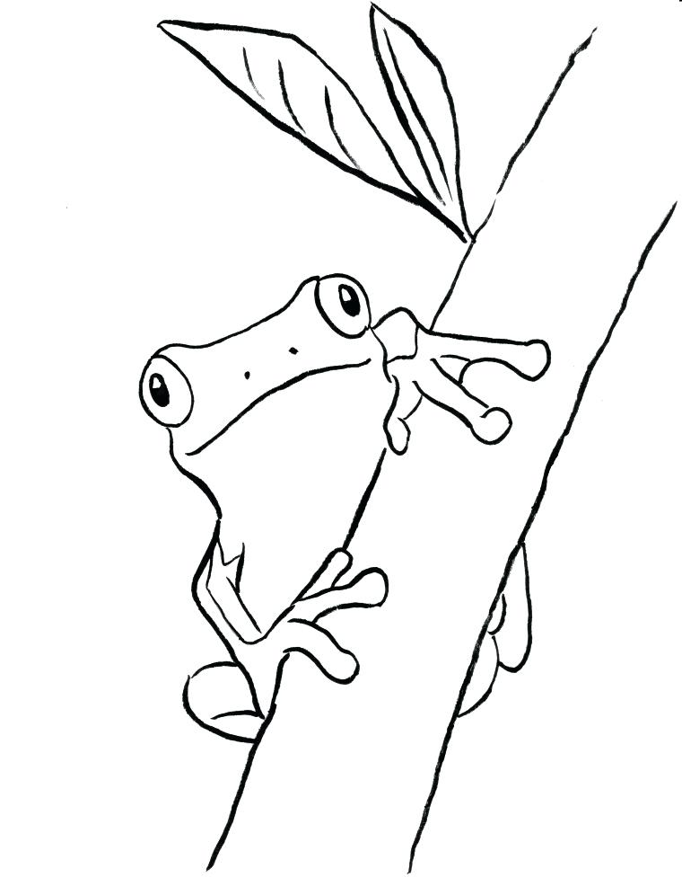 760x976 Bell Coloring Pages Print Frog Coloring Pages Stock Tree Frog