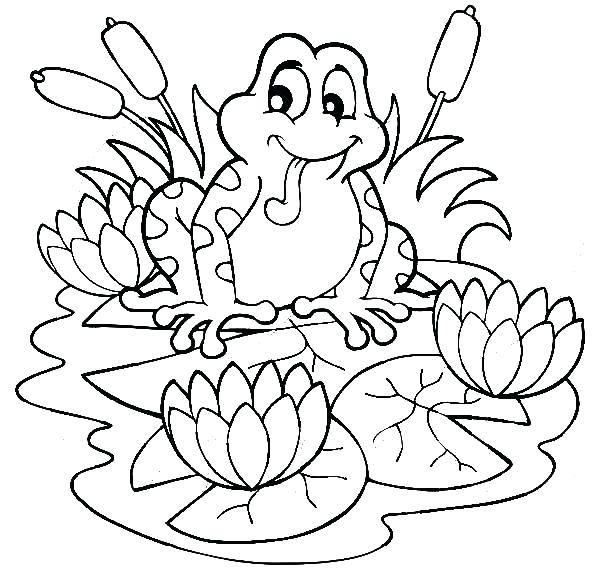 600x569 Coloring Pages Frog Frog Sitting On And Lotus Flower Coloring