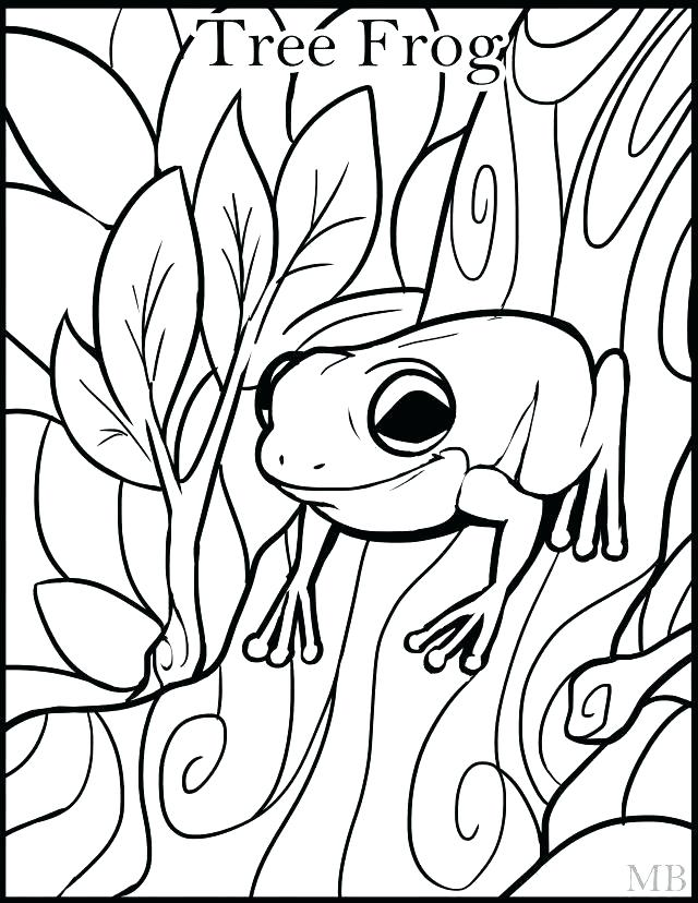 640x828 Frog Pictures To Color Frog Color Sheets Tree Frog Coloring Page