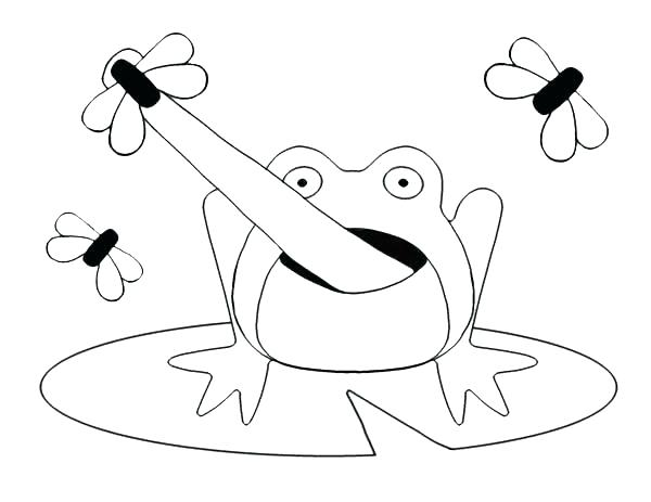 600x463 Coloring Frog Frogadier Coloring Pages