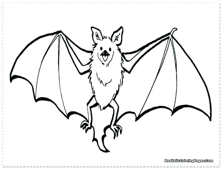770x585 Baseball Bat Coloring Page Plus Baseball Bat Coloring Page Bats